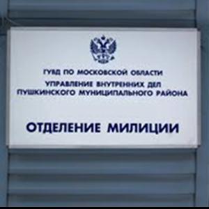 Отделения полиции Боровлянки